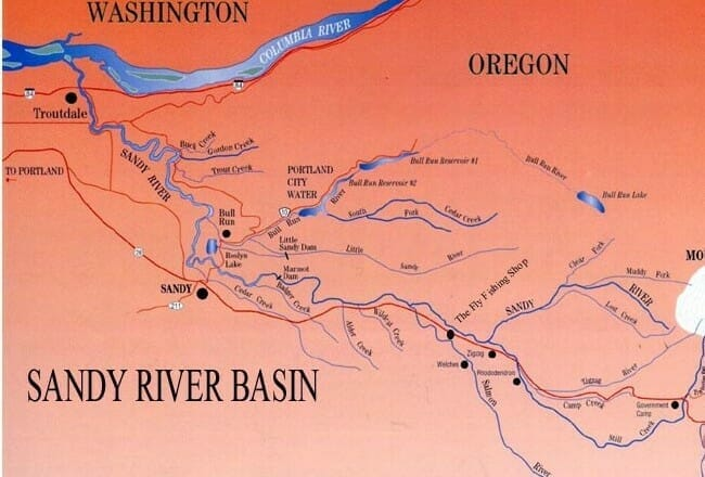 Voices From The River Return Of The Sandy River Trout