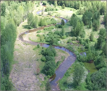 Ninemile Creek after restoration