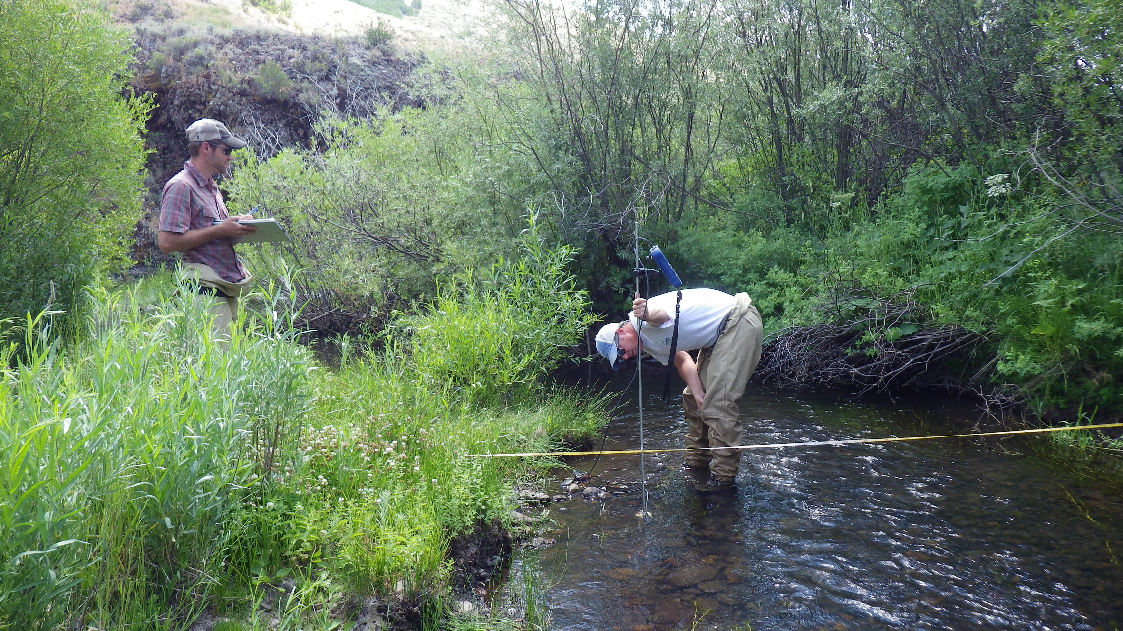 Measuring streamflows and other habitat characteristics in Goose Creek, Idaho.