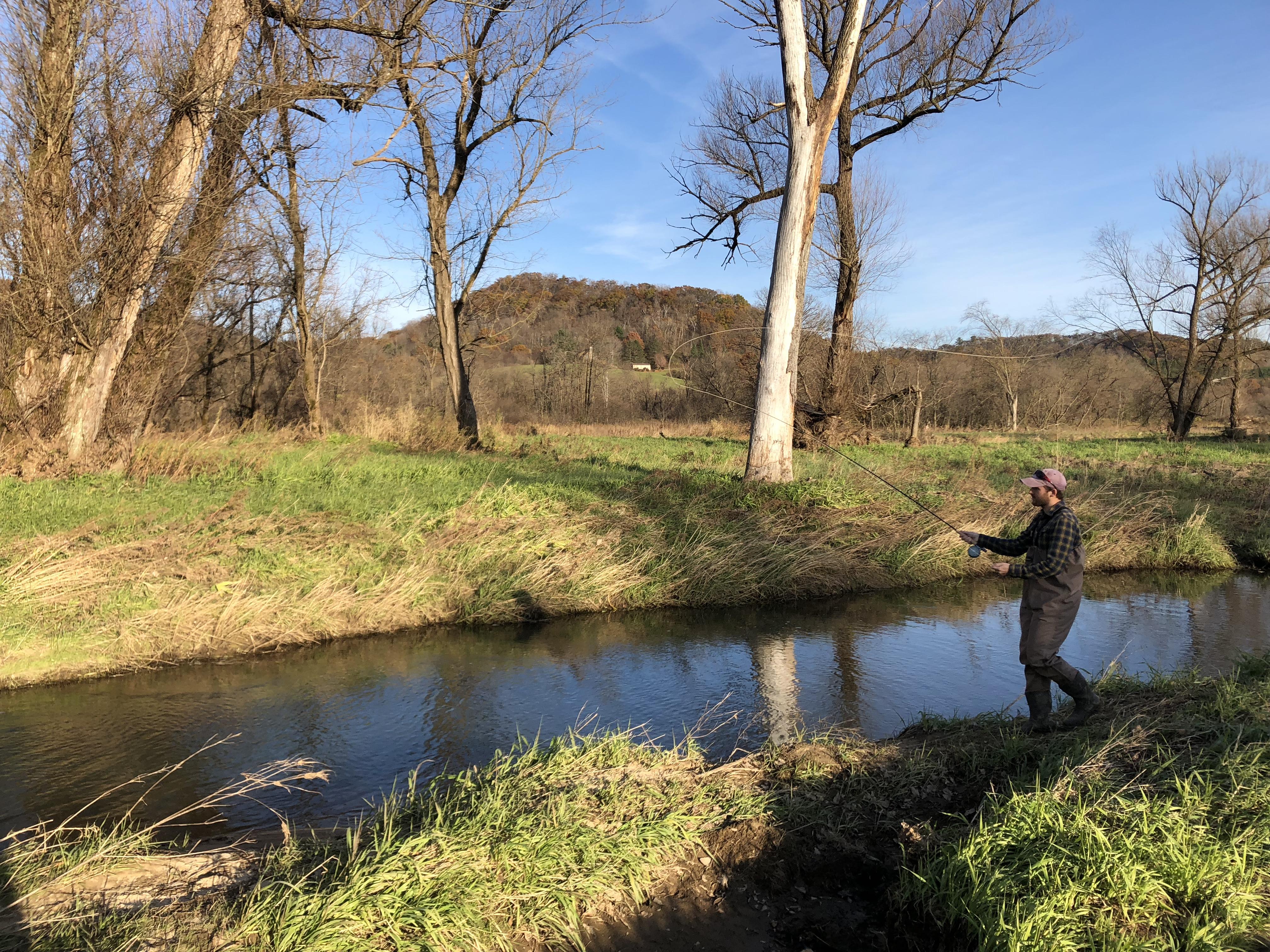 A fly fisher enjoys a restored Driftless stream.